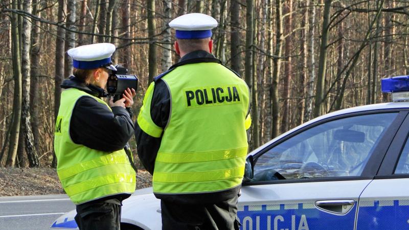 Гражданин Грузии задержан в Польше за перевозку нелегалов